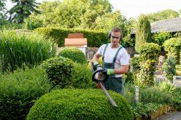 Que faut-il savoir sur le métier du jardinier ?