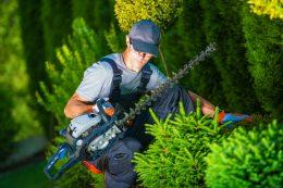 Gros plan sur le métier de jardinier paysagiste