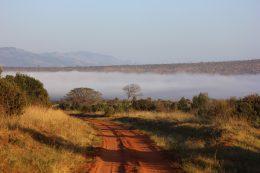 Quels sont les endroits touristiques à ne pas rater au Kenya ?